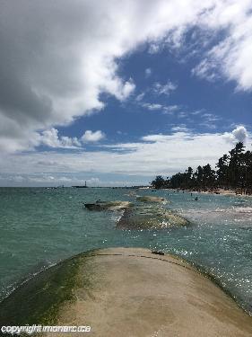 Traveller Picture Sunscape Bavaro Beach Punta Cana