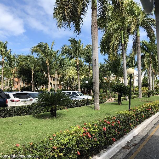 Traveller picture - Bahia Principe Fantasia Punta Cana