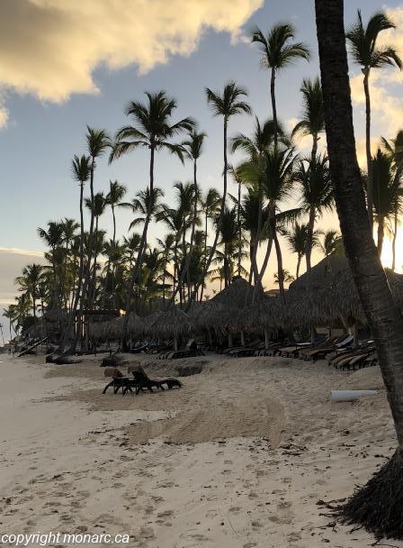 Traveller picture - Royalton Punta Cana Resort And Casino