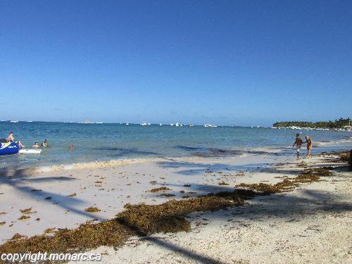 Traveller Picture Dreams Palm Beach Punta Cana
