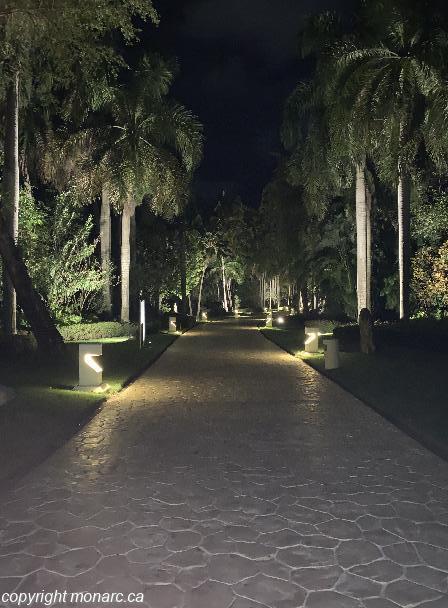 Traveller picture - Paradisus Punta Cana