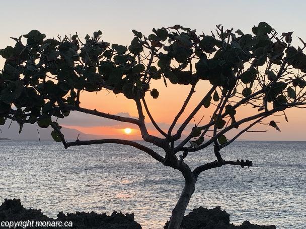 Traveller picture - Casa Marina Beach Resort