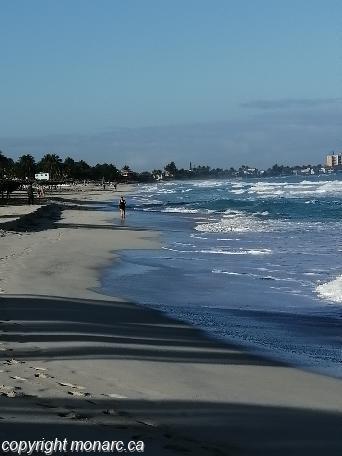 Traveller picture - Gran Caribe Sun Beach