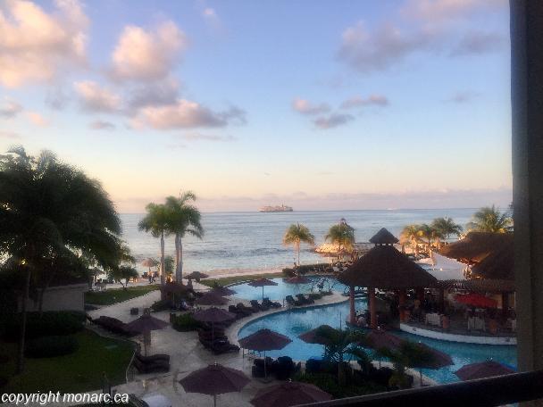 Traveller picture - Secrets Wild Orchid Montego Bay