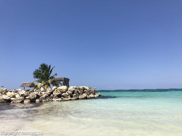 Traveller picture - Royalton White Sands Montego Bay