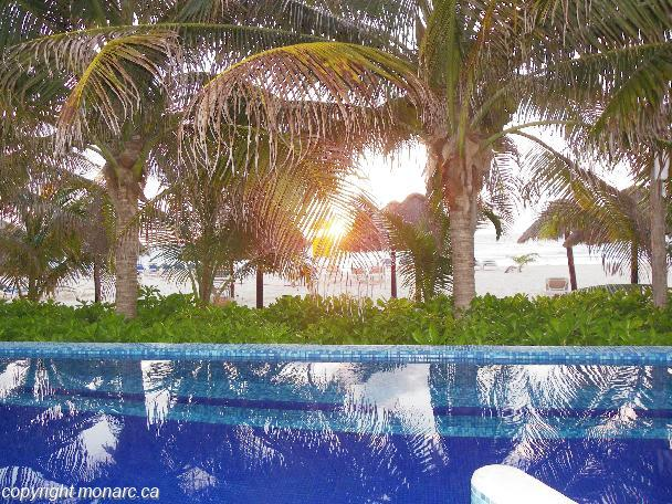 Traveller picture - Flamingo Cancun Resort