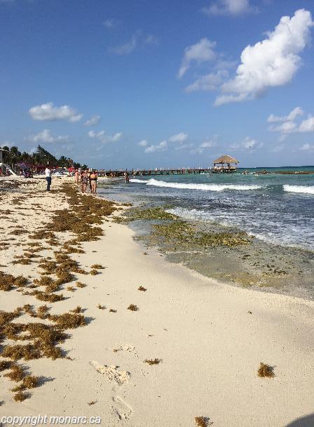 Azul Fives Beach Reviews The Best Beaches In World