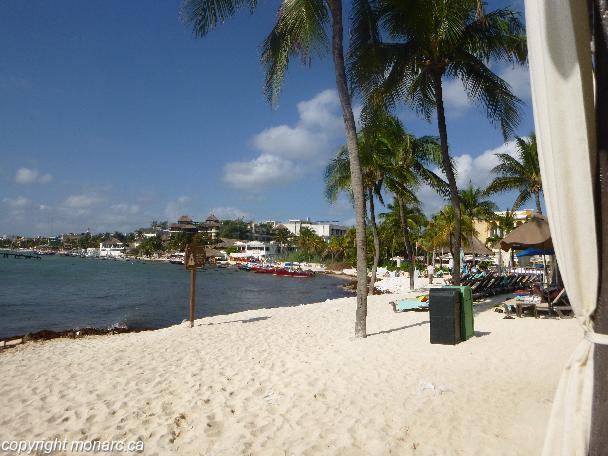 Traveller picture - Panama Jack Resorts Playa Del Carmen
