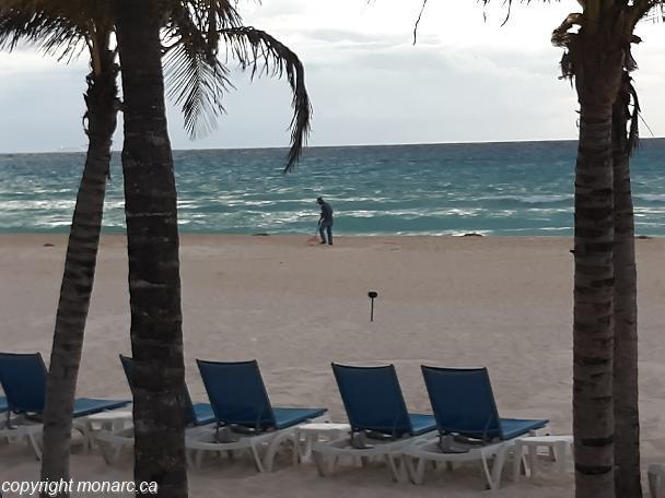 Traveller picture - Allegro Playacar