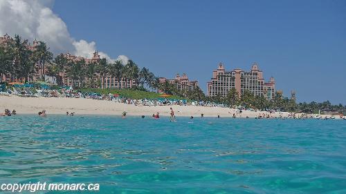 Traveller picture - Atlantis Paradise Island