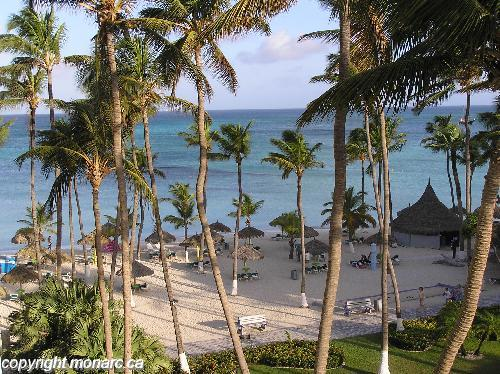 Traveller picture - Holiday Inn Resort Aruba