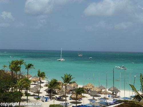 Traveller picture - Barcelo Aruba