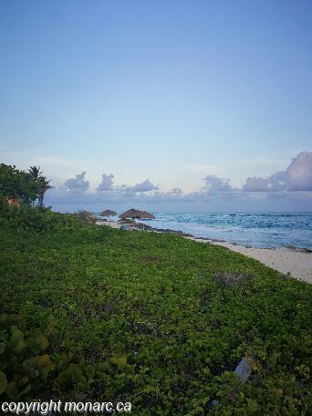 Traveller picture - Villa Iguana