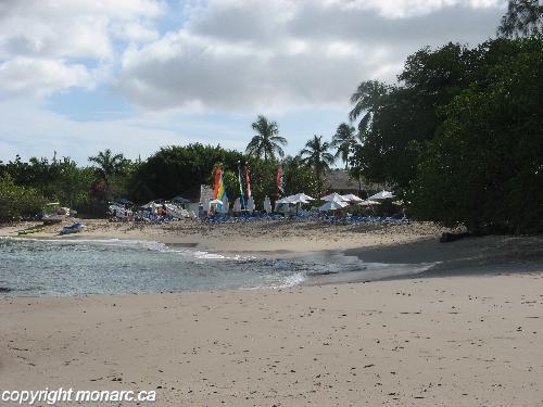 Traveller picture - Almond Beach Resort