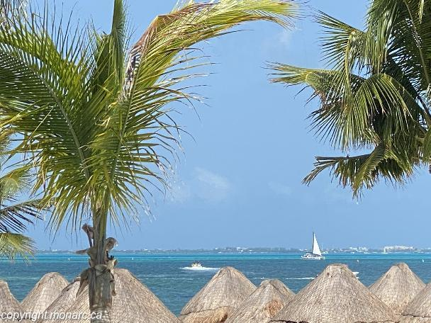 Traveller picture - Finest Playa Mujeres By Excellence Collection