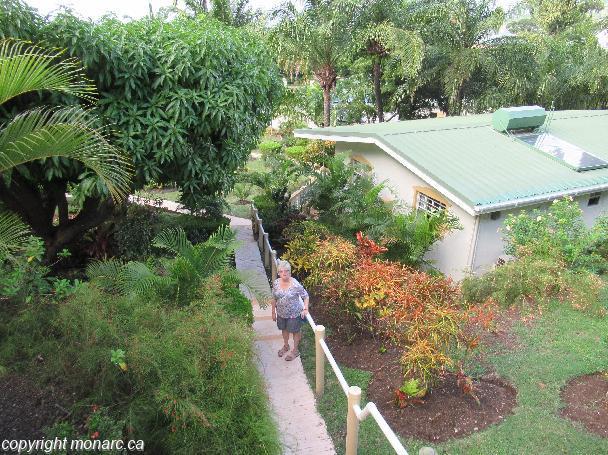 Traveller picture - Blue Horizons Garden Resort