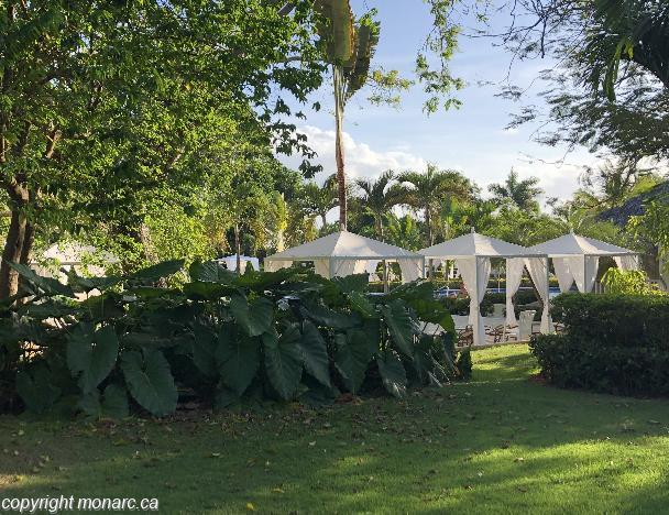 Traveller picture - Luxury Bahia Principe Cayo Levantado