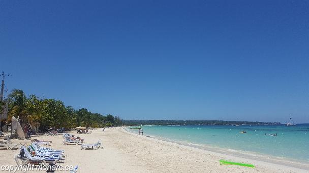 Traveller picture - Coco La Palm Seaside Resort