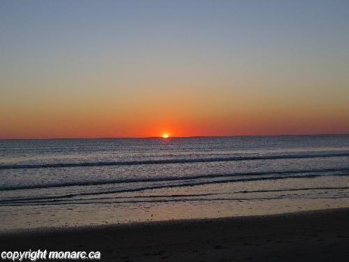 Traveller picture - Barcelo Montelimar Beach