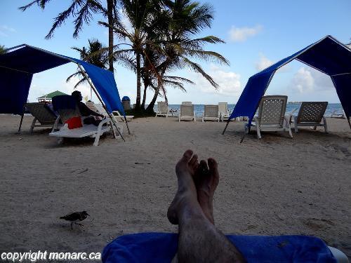 Traveller picture - Decameron Marazul