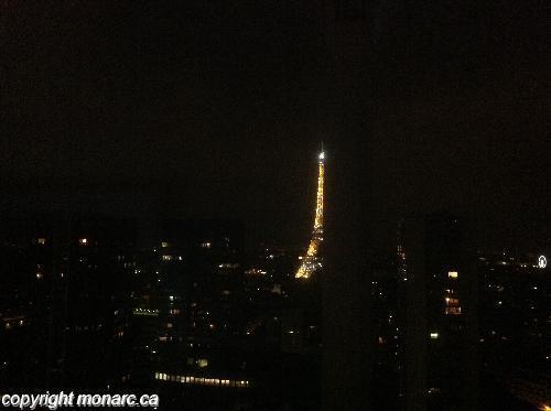 Traveller picture - Adagio Paris Tour Eiffel