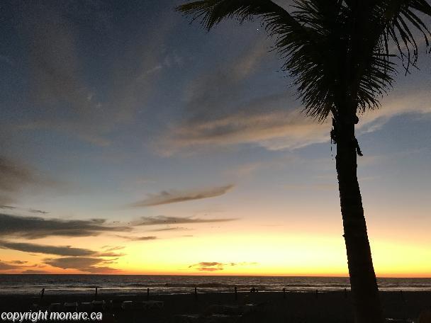 Traveller picture - Riu Emerald Bay