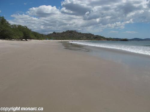Traveller picture - Margaritaville Beach Resort Playa Flamingo