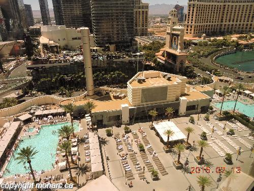 Traveller picture - Planet Hollywood Resort And Casino