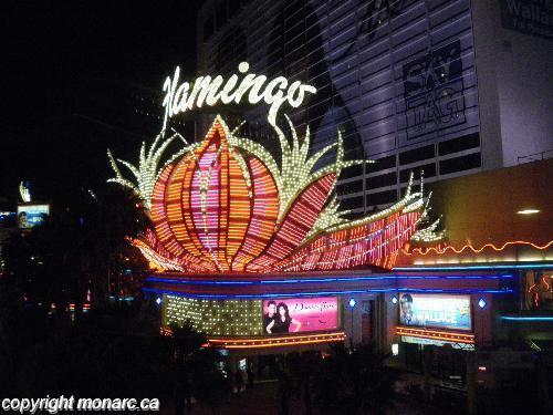Reviews For Flamingo Las Vegas Las Vegas United States
