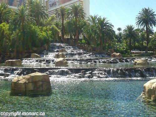 Traveller picture - Treasure Island - Ti A Radisson Hotel
