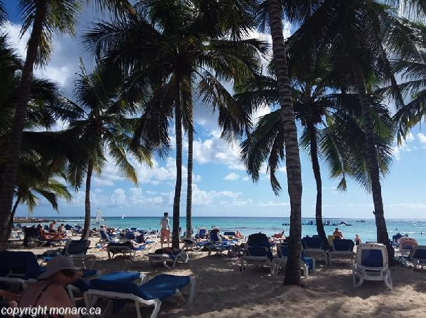 Traveller picture - Viva Wyndham Dominicus Palace