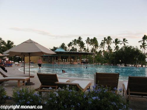Reviews for dreams la romana resort and spa la romana for Club piscine west island