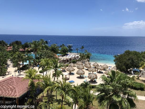 Traveller picture - Curacao Caribbean Resort