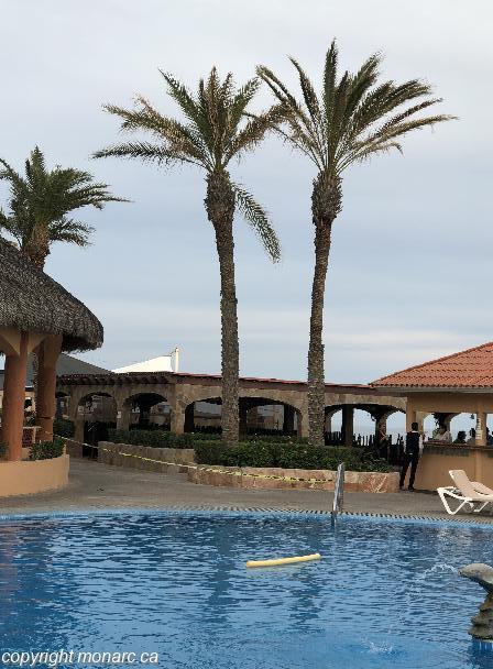 Traveller picture - Royal Solaris Los Cabos