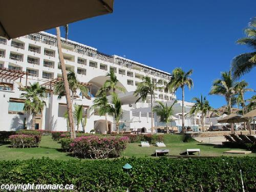 Traveller picture - Marquis Los Cabos Resort And Spa