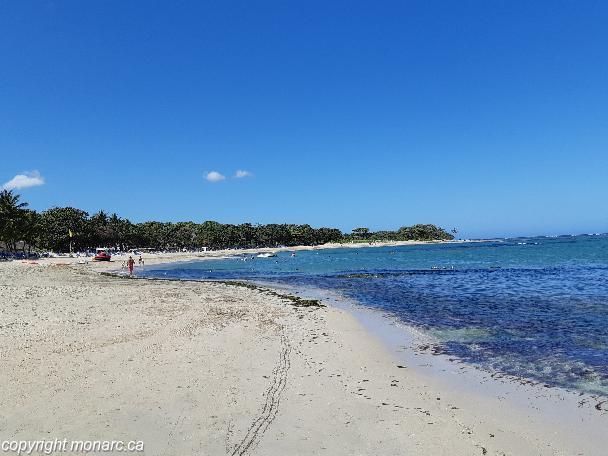 Traveller picture - Iberostar Costa Dorada