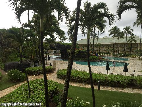 Traveller picture - Kauai Beach Resort