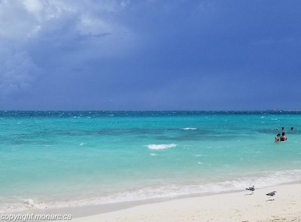 Traveller picture - Ocean Casa Del Mar