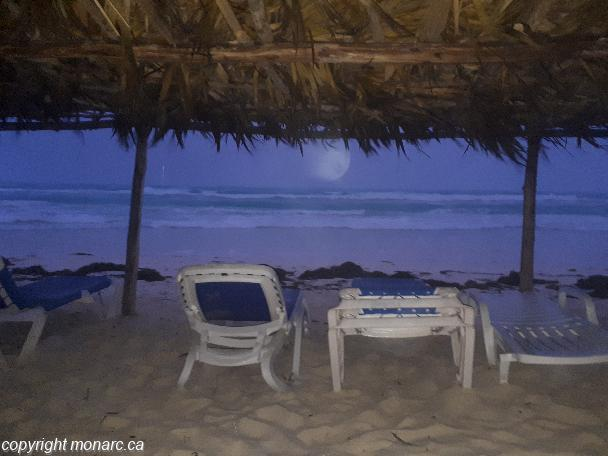 Traveller picture - Starfish Cayo Santa Maria