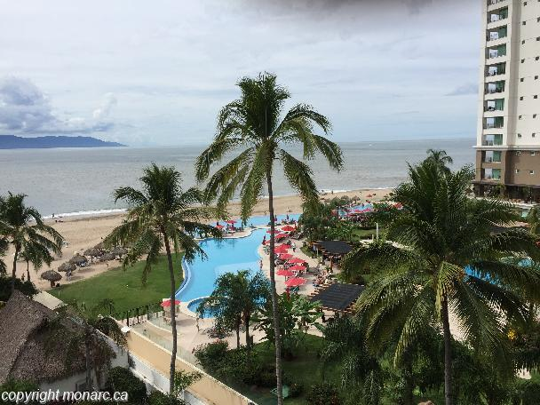 Traveller picture - Sunscape Puerto Vallarta Resort And Spa