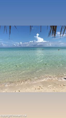 Traveller picture - Memories Caribe Beach Resort