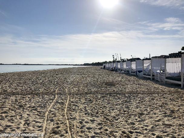 Memories Flamenco Beach Resort Reviews